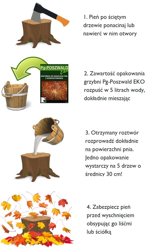 grzybnia do kompostowania instrukcja